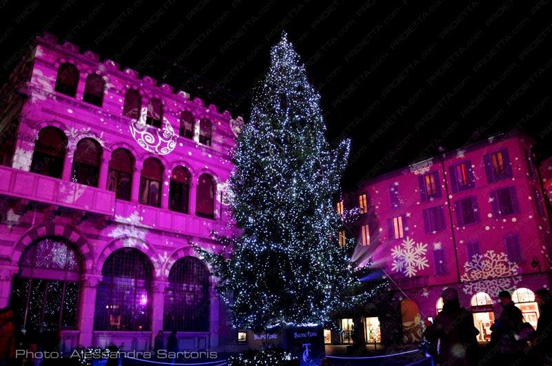 christmas_light_2015
